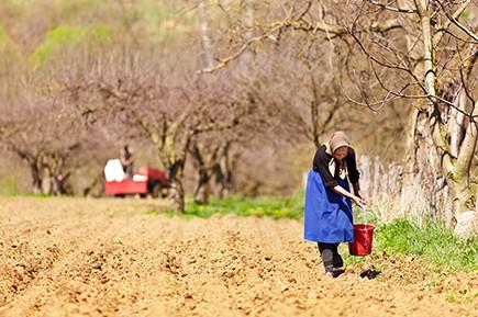 Visibilizar la problemática socio laboral en las  zonas rurales.